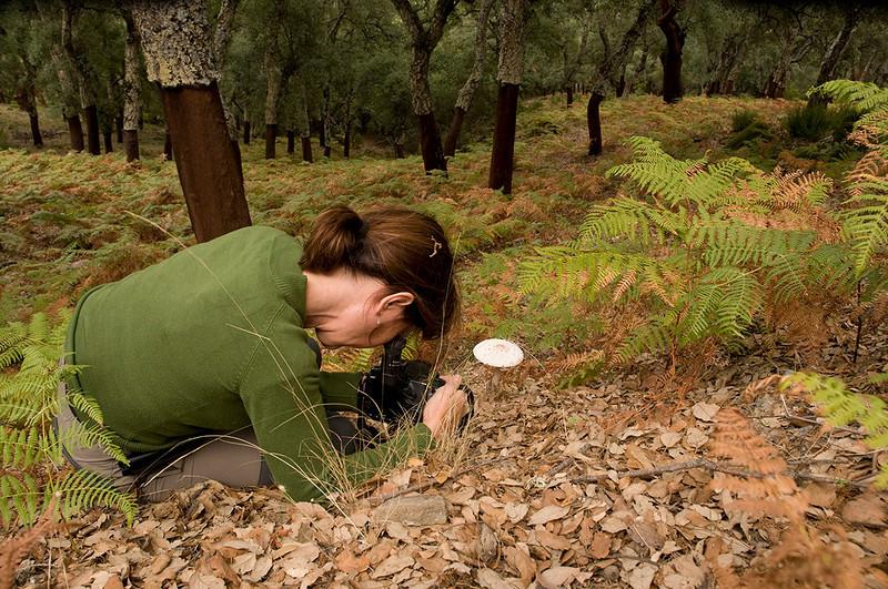 Los Alcornocales Natural Park. Ana RO and the mushroom