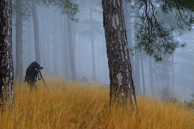 Ana en la Sierra de Cazorla.