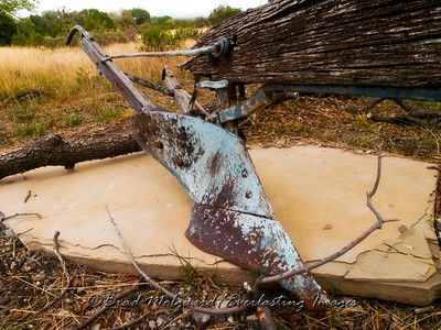 """Final Resting Place"" Frijole Ranch-Guadalupe Mountains National Park, Texas"