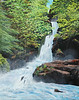 "Columbia River Gorge, Oregon<br /> 24""x 30""<br /> oil on canvas<br /> 2004"