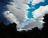 "CLOUD DRAMA<br /> <br /> 20""x 16""<br /> acrylic on canvas<br /> 2004<br /> <br /> (second course study)"