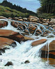 "MOUNTAIN CREEK CASCADE<br /> <br /> outside Denver, Colorada<br /> 24""x 18""<br /> oil on canvas<br /> 2004<br /> <br /> (Lucy and Quinn first meet)"