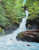 "MULTNOMAH LOWER FALLS<br /> <br /> Columbia River Gorge, Oregon<br /> 24""x 30""<br /> oil on canvas<br /> 2004"