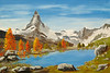 "TAMARACKS BY MATTERHORN MOUNTAIN LAKE<br /> <br /> Wallis, Switzerland<br /> 30""x 20""<br /> oil on canvas<br /> 2001<br /> <br /> JM"