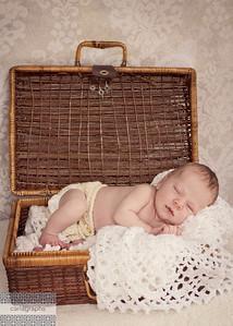 AZ in picnic basket rosy-