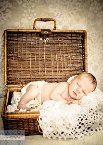 AZ in picnic basket vintage-