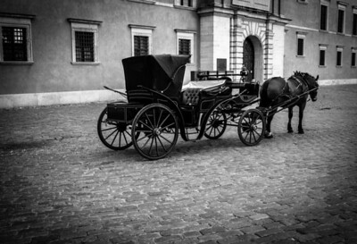 Lonely and quiet horse and its car in front of Royal Palace in Old Warsaw, Poland
