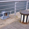 Fairleads are very rare on Glasgow quaysides nowadays
