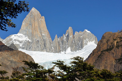 Cerro Fitz Roy through Trees