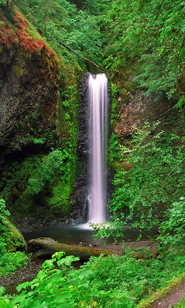 Columbia River Gorge Waterfall
