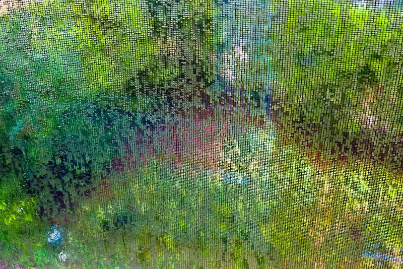 Spring Screen