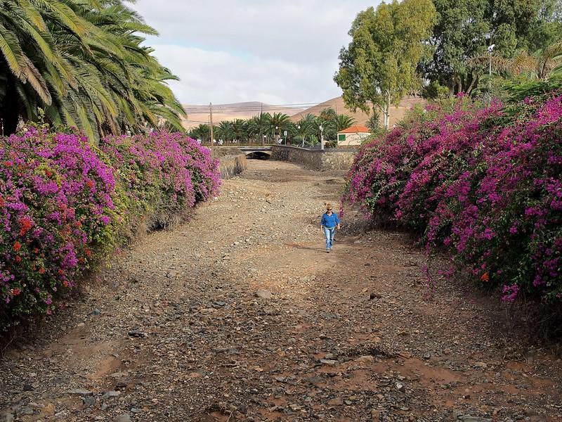 Fuerteventura Excursion 017