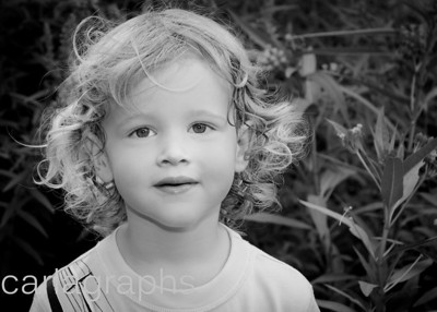 LiamF Close Up Flowers BW-6693