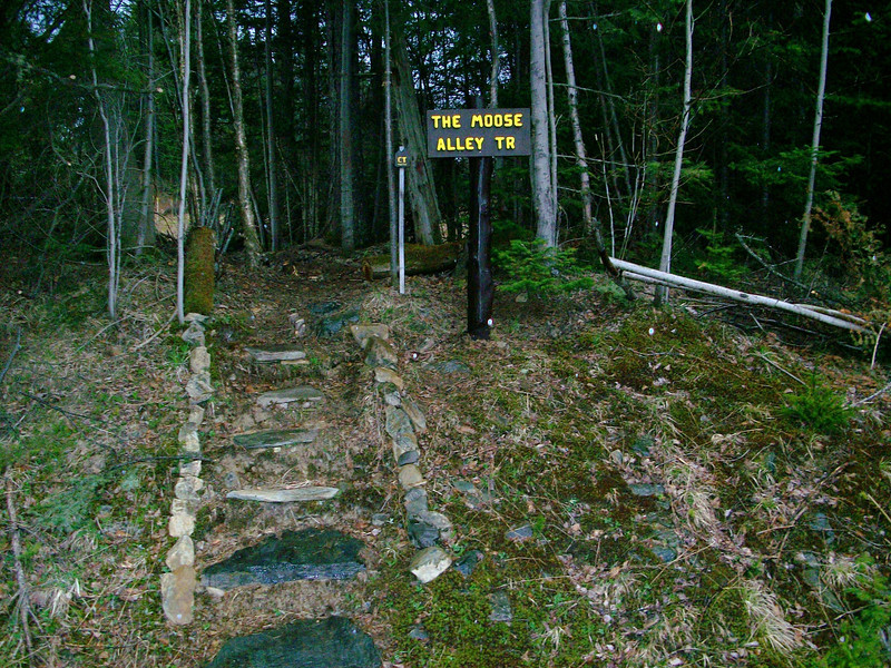The Moose Alley Trail, part of the CT