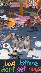 bad kittens