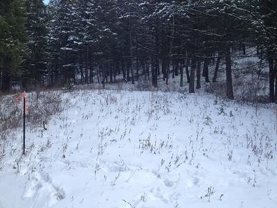 Snowpit Sites