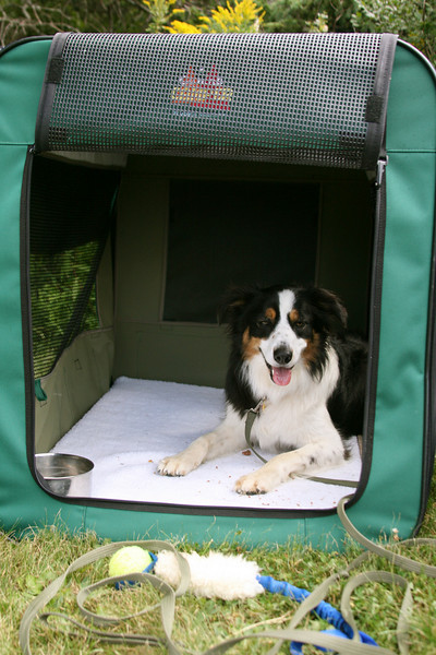 Pre-requisites:<br /> * Basic family pet or obedience classes.<br /> and<br /> * Drive and comfort for crate.
