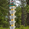 Melrose Florida's Totem Pole Road