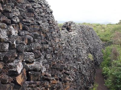 Galapagos - Isabella Island