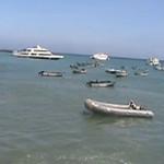 Galapagos Video