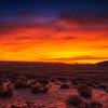 Tequila Sunrise, Page AZ