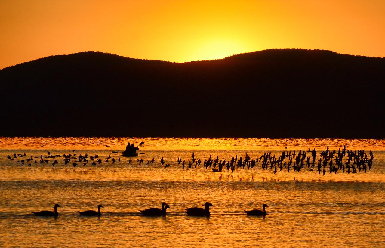 Golden Morning, Mono Lake
