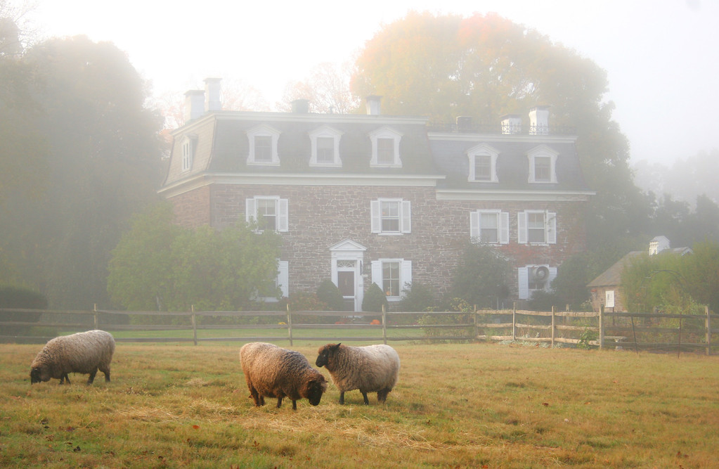 Sheep inn c 1 XL Peaceful Places, Peaceful Spaces: Photos from 2012