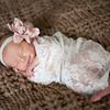Joanna Torres Newborn Session