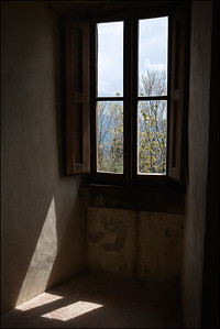 Catagna_WindowView