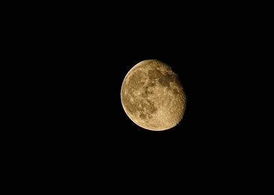 Moonage Dreamer