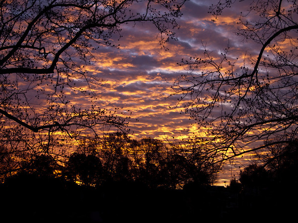 Dec 4, 2010 Sunrise