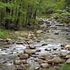 Stony creek from bridge.