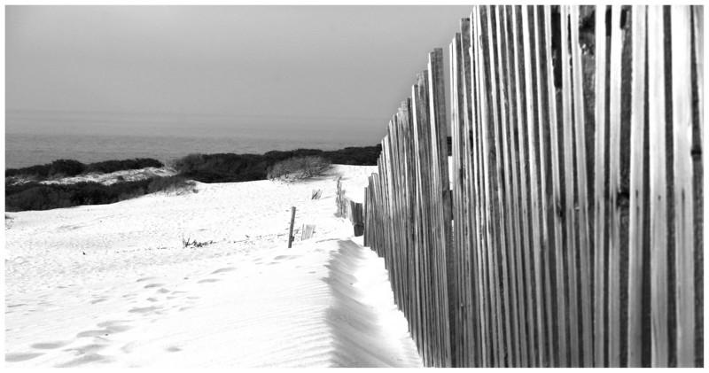 Sand dunes 5 12 Aug 07