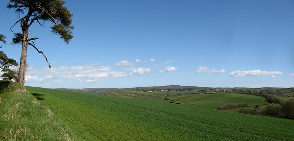 View to Modbury