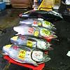 Tuna at Tsukiji fish market