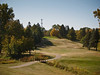 Elm Creek, the par 4 9th hole. The blue flag is just visible at the base of the gold tree.