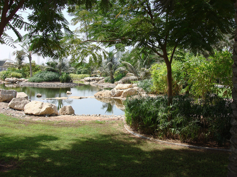 The gardens in Zabeel Park, in the desert (yes, the desert) climate, in Dubai, the United Arab Emirates. This is one of my favorite parks here in the UAE.