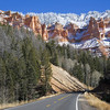 Road to Cedar Breaks National Monument November 12, 2005