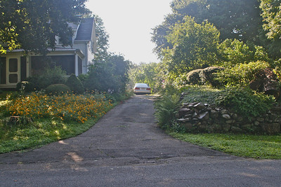 summer 2010. Notice Black-Eyed Susans on front lawn to left of driveway. These wild flowers pop up all over the property.