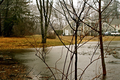 104 Elm Street, the Moore's have a fairly good size pond in their front lawn.