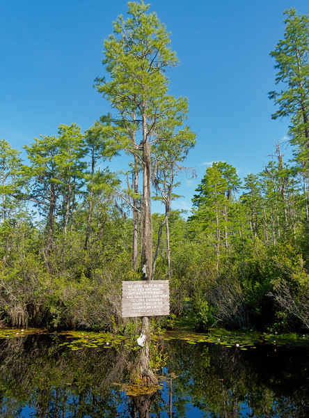 """""""We Were Once Alive"""" Sign at Okefenokee Swamp"""