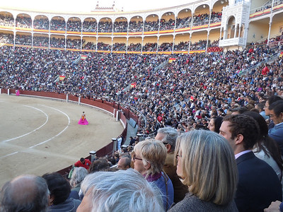 Reminds me of the Roman Coliseum.  Very much in the gladiator tradition.