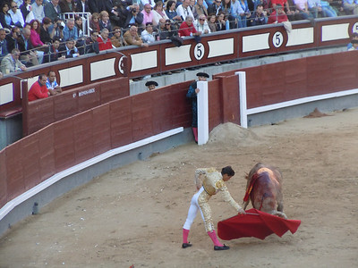 This guy was knocked down by the bull a few moments after this photo was taken.