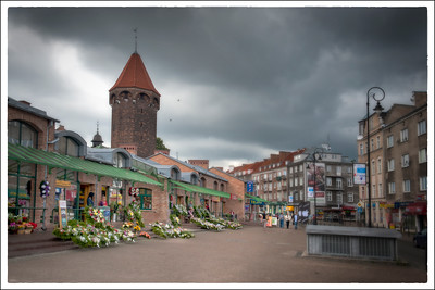 Flowers, Gdansk, Poland.