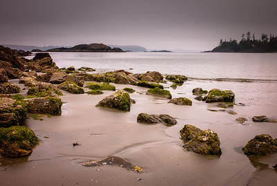 Low tide and green rocks in Tofino, Vancouver Island, British Columbia, Canada
