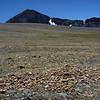 Dana plateau, Mount Dana
