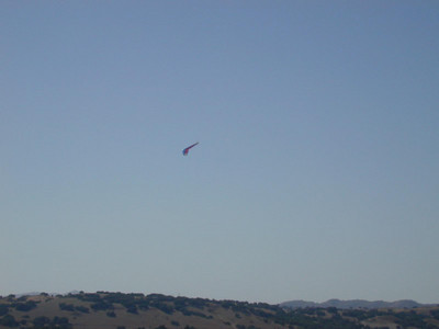 Sky: Glider in the sky