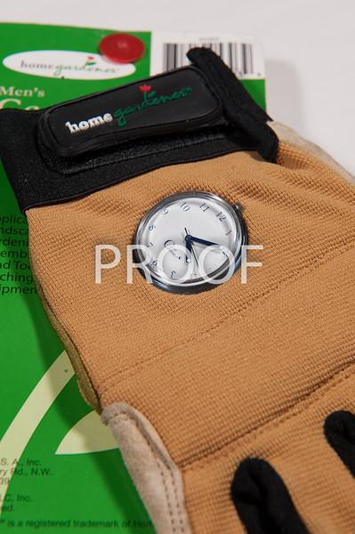 glove_time-3285