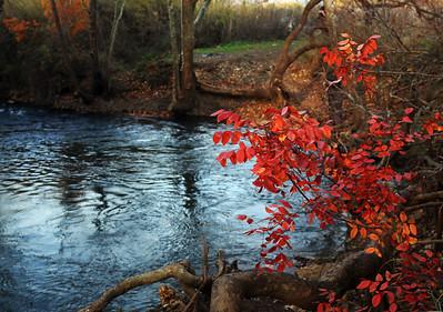 Fall colors at the river Pan