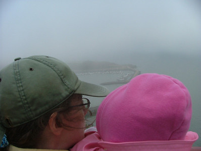 Peering into Fog